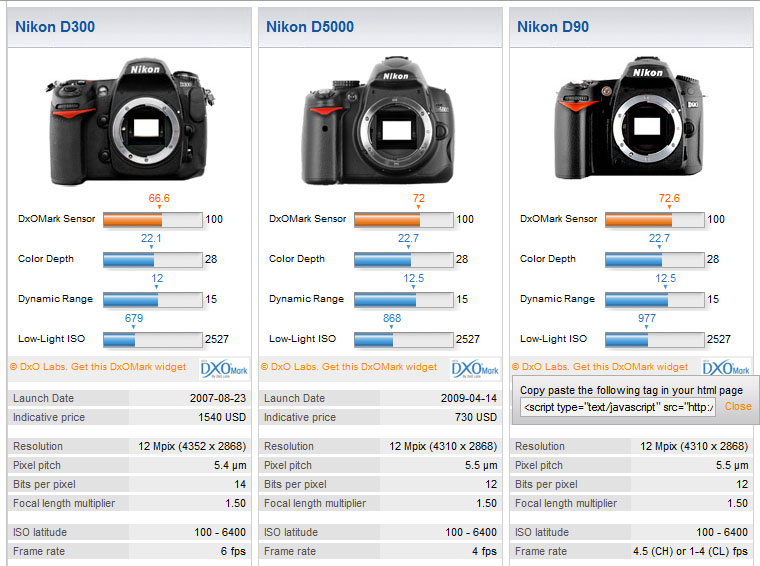 Want to upgrade? Nikon D300, D90 or D5000?