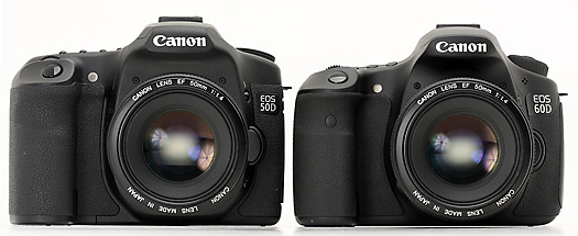 Canon 50D is noticeably bigger than Canon 60D