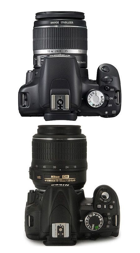 canon-t1i-vs-nikon-d3100-top